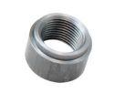 AEM O2 Sensor Bung Mild Steel Universal - 35-4005