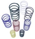 Replacement Springs - Wastegate